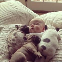 Shhh… The babies are sleeping. :)