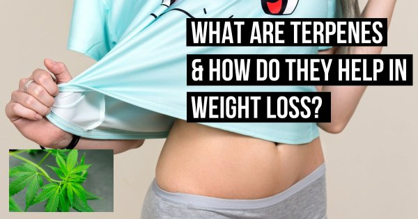 What Are Terpenes & How Do They Help In Weight Loss?