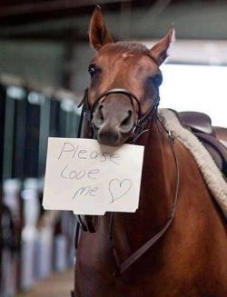 Aww let's send him some love! <3
