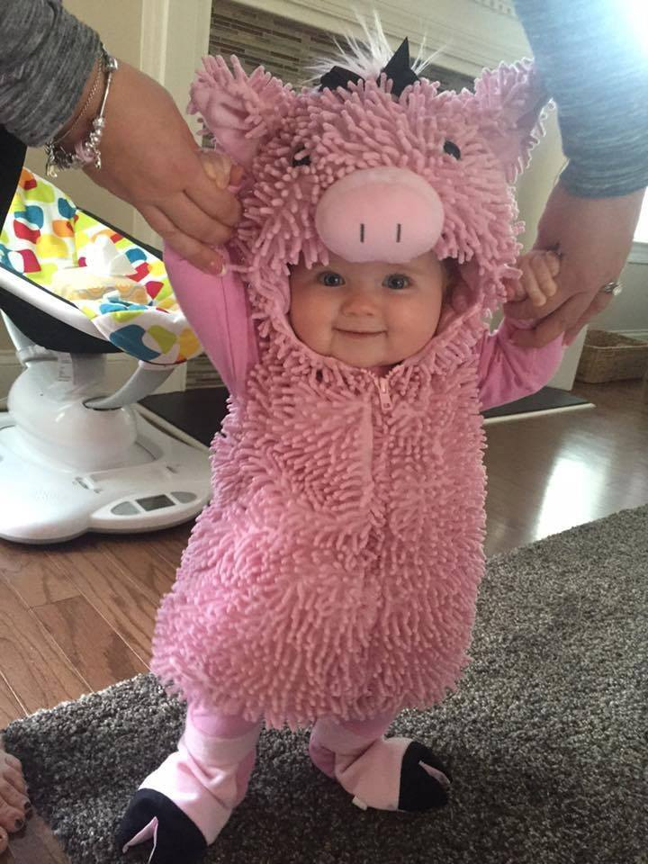 The cutest little piglet on this planet!