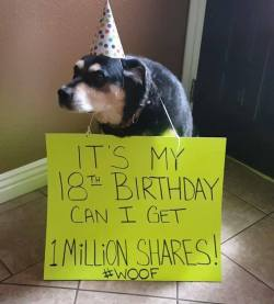 You have my share! :)  Have a very Happy Birthday!