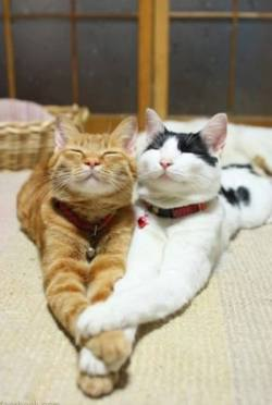 Adorable friendship! <3