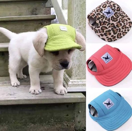Custom Made Machiko Dog Hats… ADORABLE! Custom Made Machiko Dog Hats… ADORABLE!  Who ...