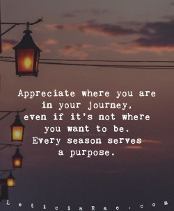 Appreciate where you are in your journey, even if it's not where you want to be.   Every s ...