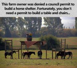 """""""Clever farm owner…"""""""