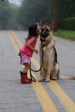 Teach the kids to love animals