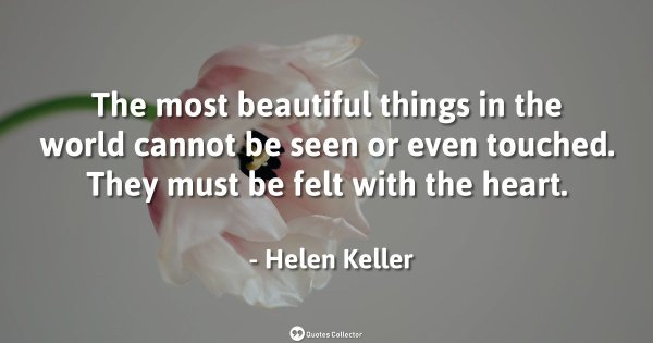 The most beautiful things in the world cannot be seen or even touched. They must be felt with th ...