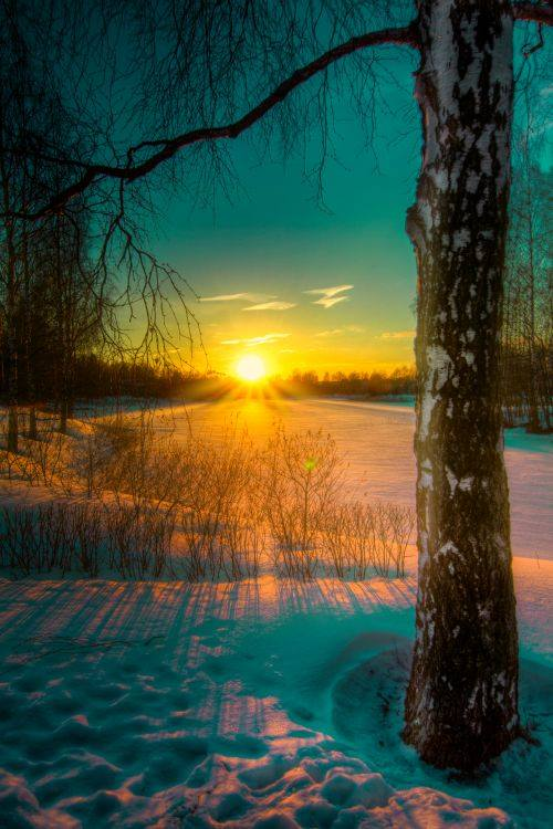 Beautiful and lovely winter sunrise.