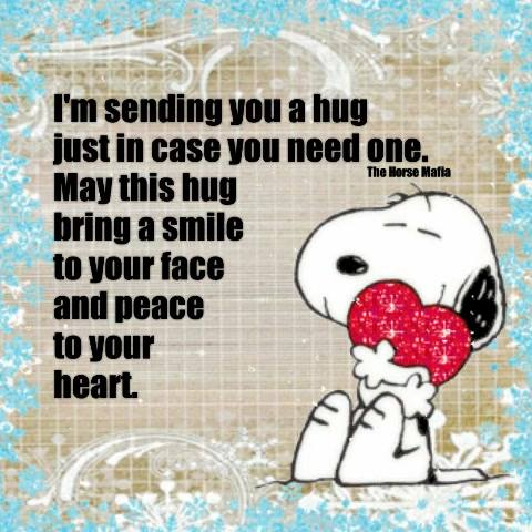 I'm sending you a hug-The Horse Mafia®