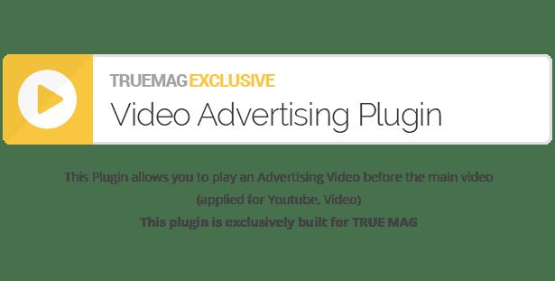 True Mag - WordPress Theme for Video and Magazine - 25