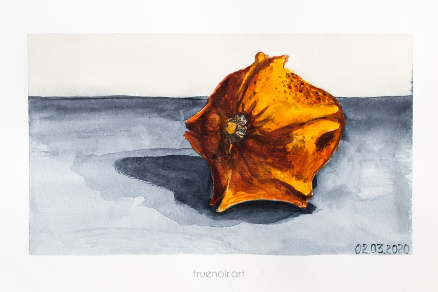 Star gourd, watercolor painting