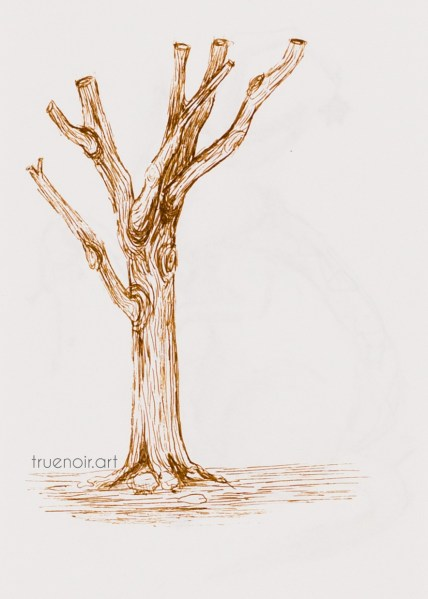 .033 Abrupt Tree, pen drawing