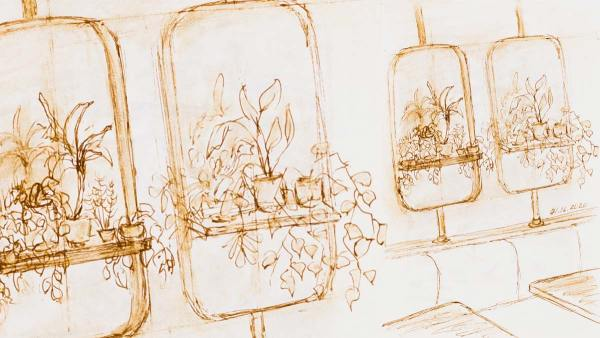.036 North Italia House Plants, interior drawing