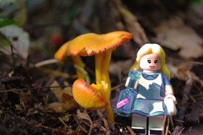 Disney LEGO Alice in Wonderland