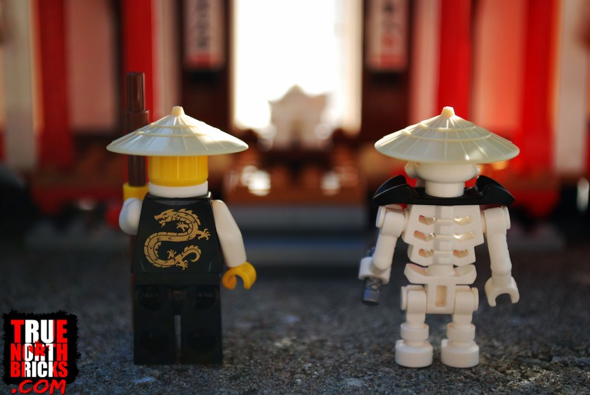 Rear view of Sensei Wu and Wyplash