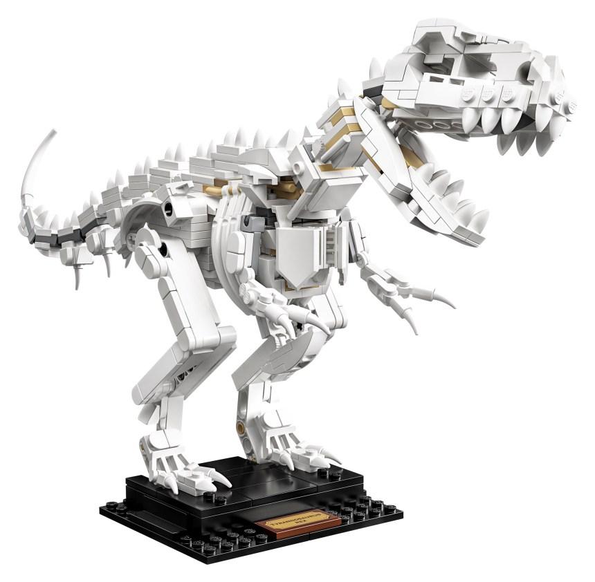 Ideas Dinosaur Fossils