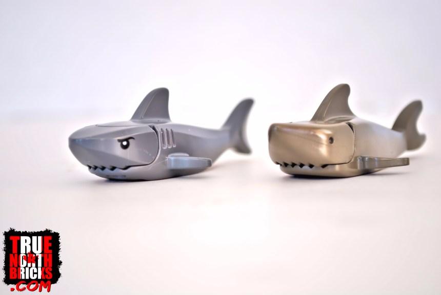 Old versus new sharks.