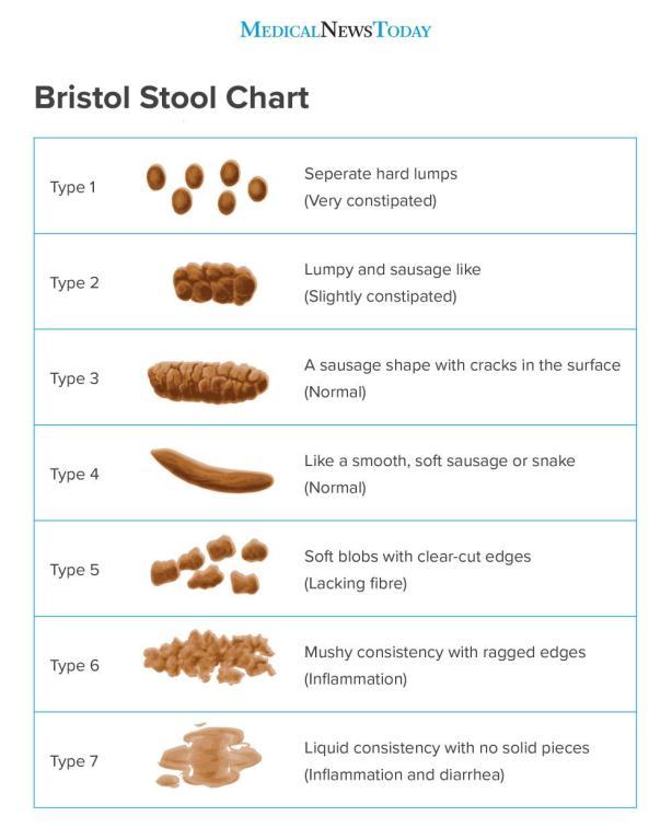 Bristol Stool Chart (Leonard, 2020).