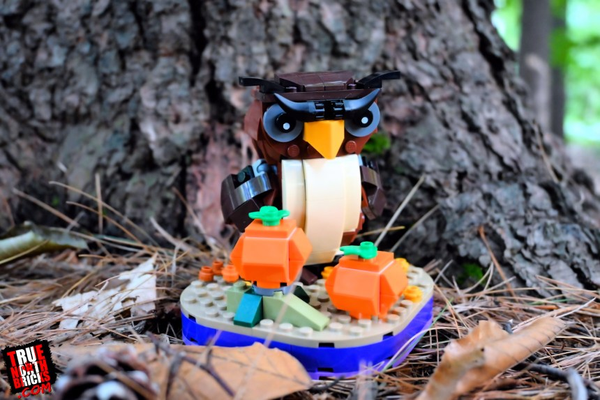 Halloween Owl (40497) front view.