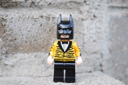LEGO tiger suit Batman front view
