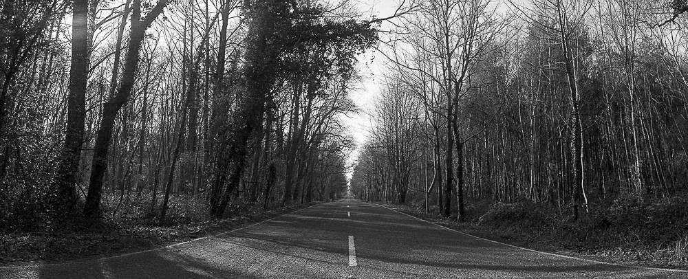 Widelux Test open road