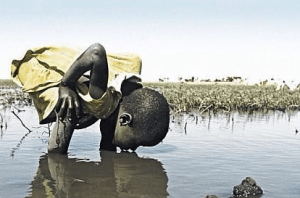 UN: 85% of the world population lives in the driest half of the planet. 783 million people do not have access to clean water and almost 2.5 billion do not have access to adequate sanitation. 6 to 8 million people die annually from the consequences of disasters and water-related diseases.