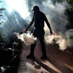 Florida Shudders as Zika Spread Forces Miami Shops to Close