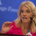 Conway rips 'precious snowflakes' protesting Trump