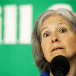 Caddell: Jill Stein Recount Effort a 'Fraud,' 'Playing on People's Emotions and Fears'