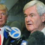 Trump says Newt Gingrich 'incorrectly stated' that he was dropping 'drain the swamp' mantra