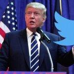 Trump Should Never Stop Tweeting