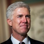 VIDEO: Dem Senator Concedes Gorsuch Is A Lock For Confirmation