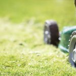 Businesses Claim That Without H-2B Visa Expansion, Lawns Will Be Left Unmowed