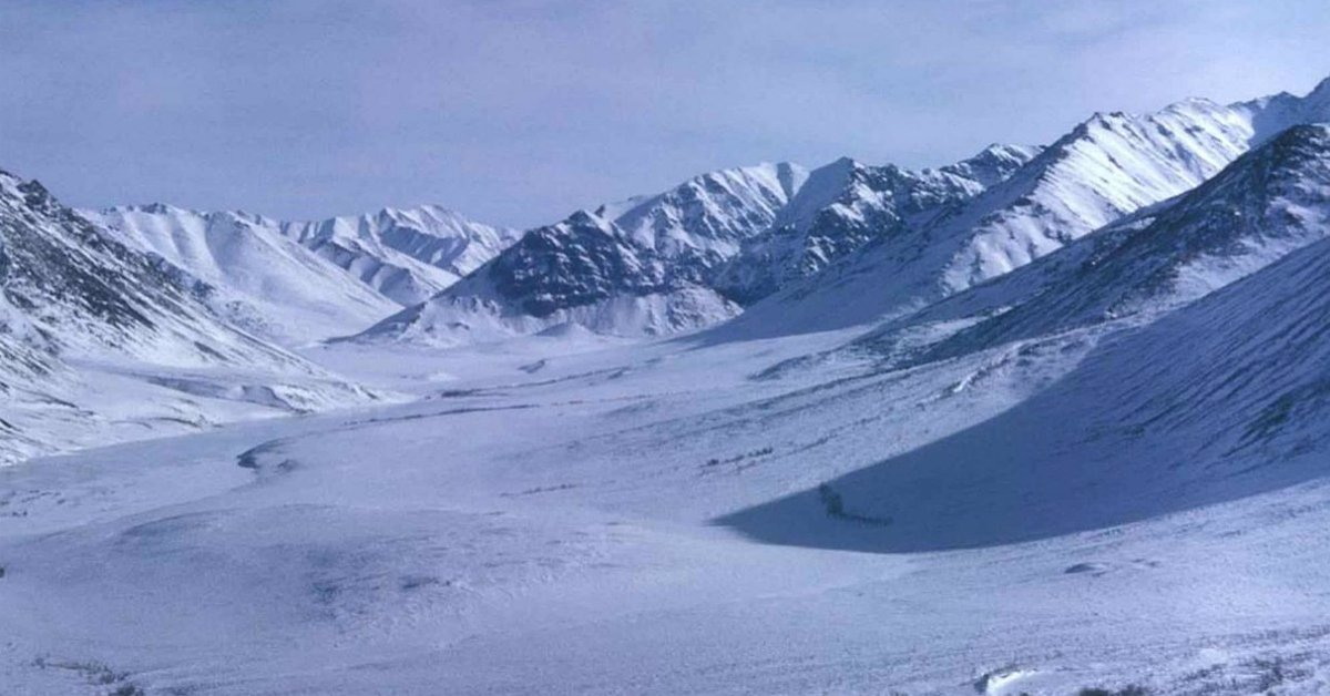 Report: Shocking Find at Antarctica Silences Climate Change Activists