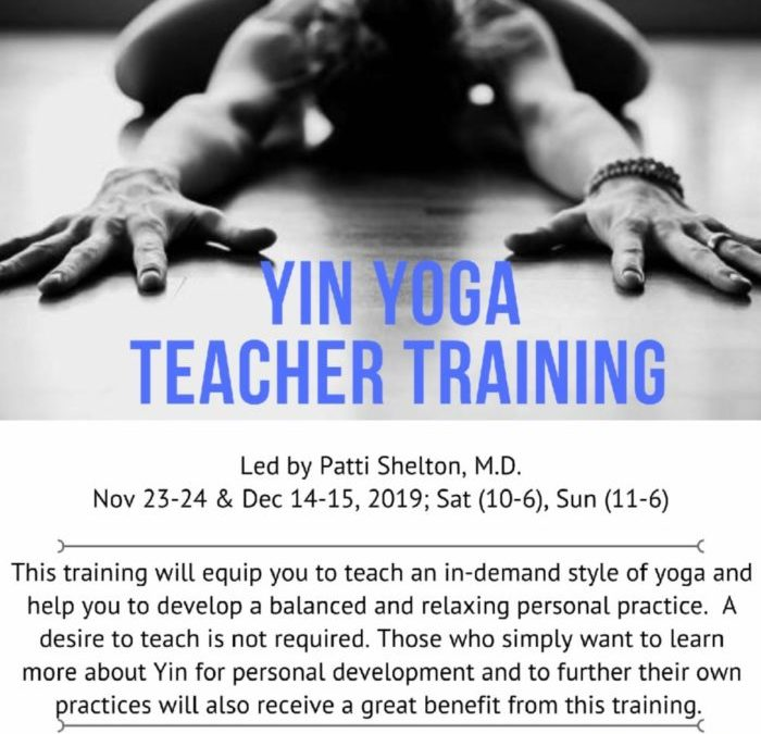 Yin Yoga Training