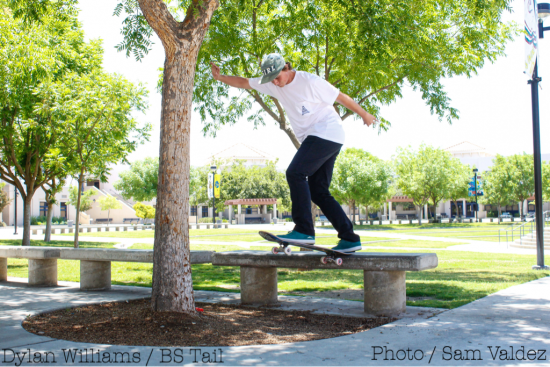 Dylan Williams BS Tail
