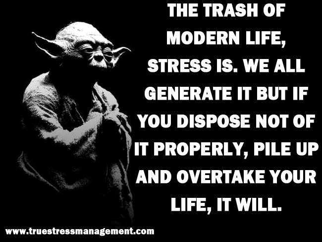 Yoda Stress Quotes 13