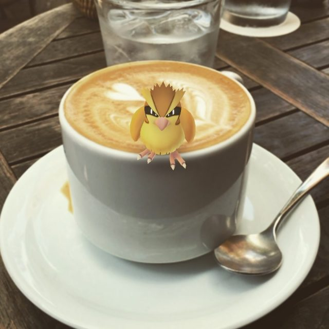 Pokemon critters like cafes-- Photo by Lauren Shannon