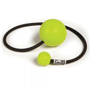 fitness ball gift