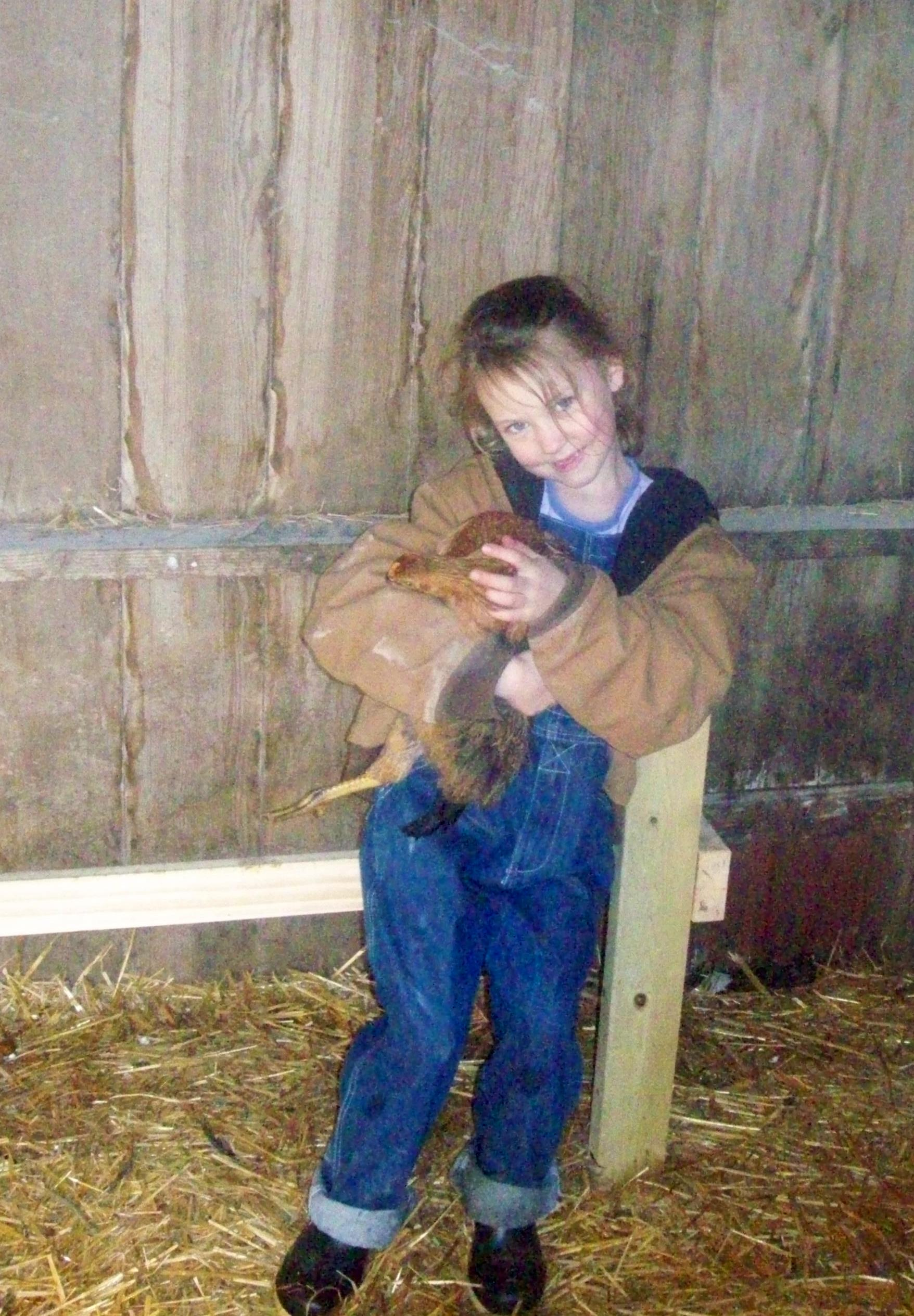 Lizzie and Little Red Hen