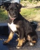 Belle 4 months