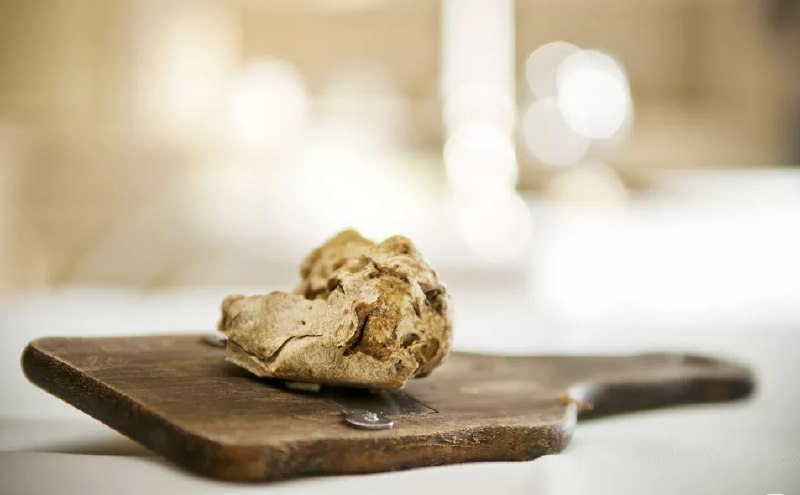 what-is-white-truffle?
