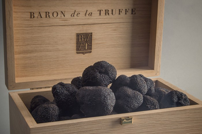 get-acquainted-with-the-truffle-on-a-segway