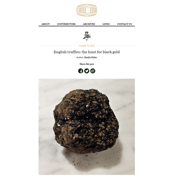 "leading-wine-merchant's-blog-features-us-–-""english-truffles:-the-hunt-for-black-gold"""
