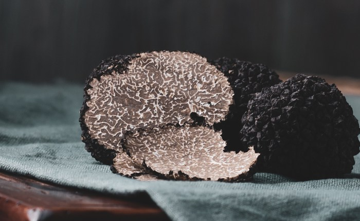 nz-truffles-and-stnzl-agms-–-29-august-2020-@1pm-in-wellington