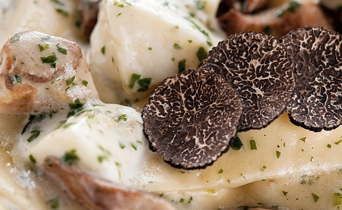 nz-truffle-association-conference-2020-–-cancelled