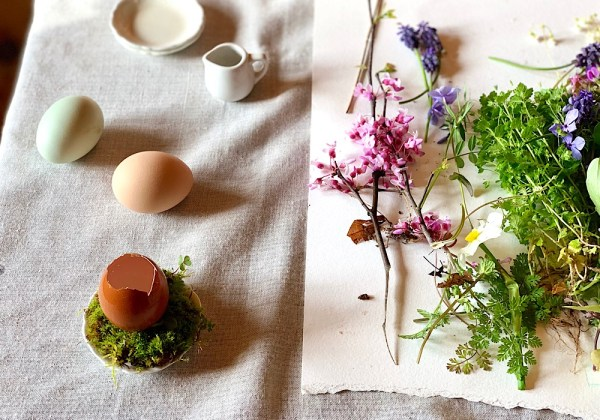 eggshells, flowers