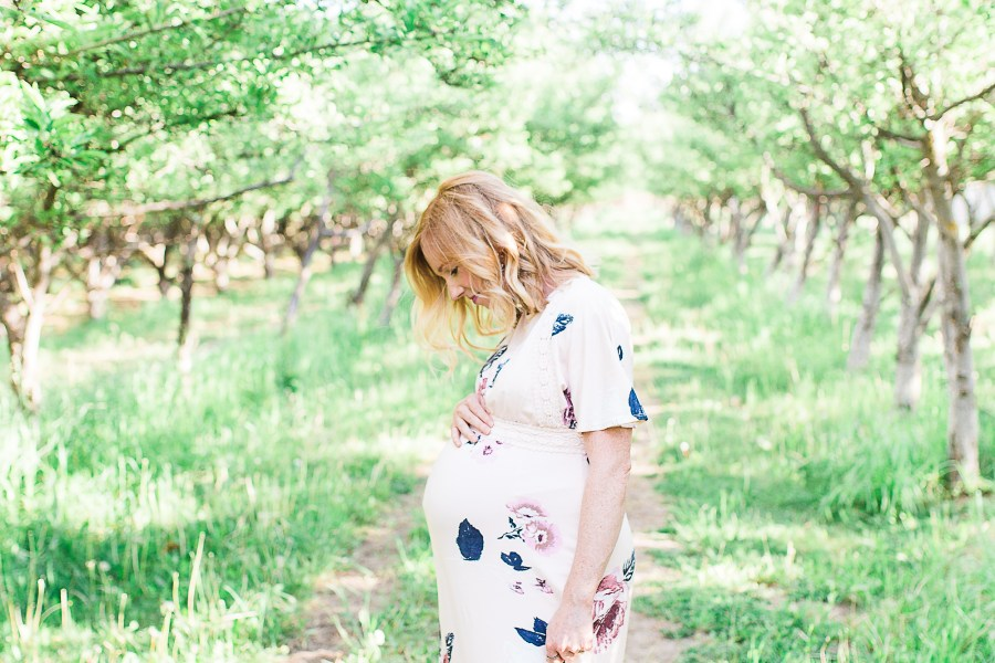truly photography, utah maternity photographer, utah portrait photographer, photographer in utah, maternity, utah maternity, provo orchard, provo state hospital orchard