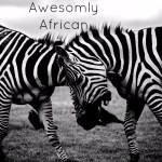 Awesomely African