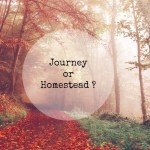 Journey or Homestead?
